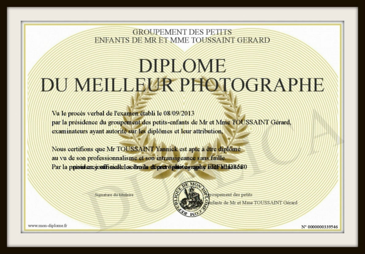 diplome photographie